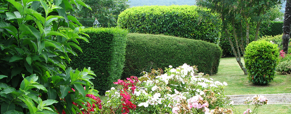 Apaisant, merveilleusement fleuri, le jardin est une invitation au repos